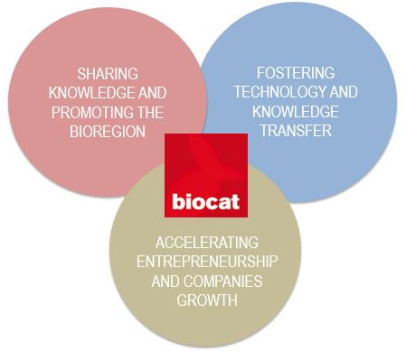 Eixos Estratègics de Biocat