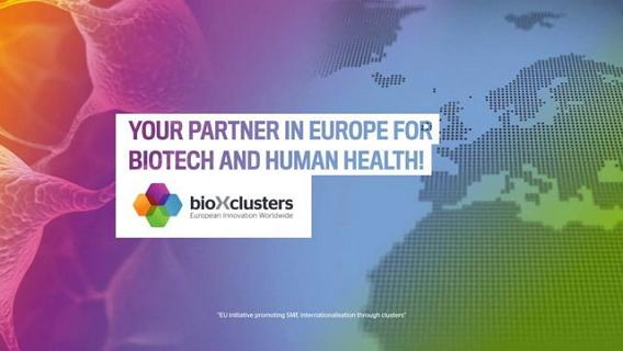 bioxclusters 568