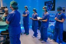 Immersió clínica d·HEALTH Barcelona