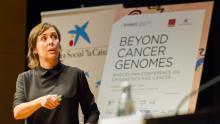 Sinopsis B·Debate: El cáncer más allá del genoma