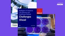 portada informe Bioregió 2020